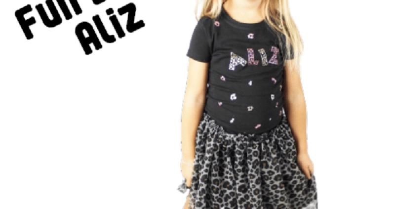 FlexMade Blog 6 Fun with Aliz